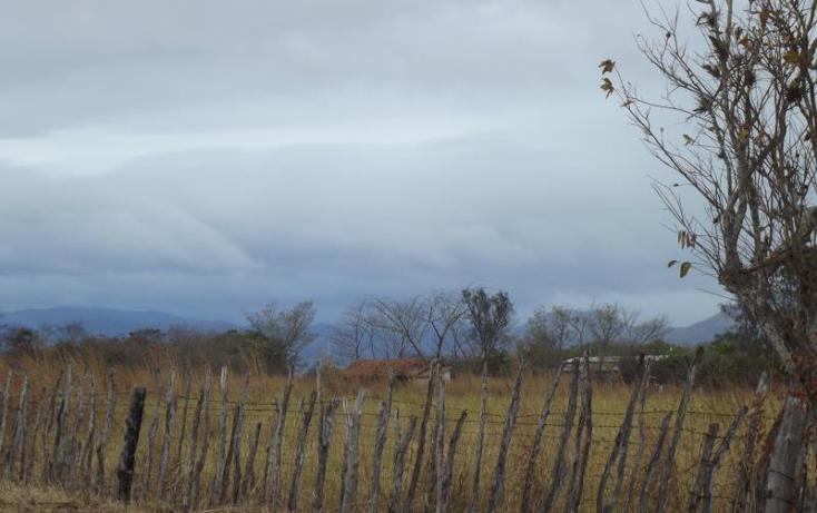 Foto de terreno industrial en venta en carretera internacional tramo cintalapa - tapanatepec kilometro 2+00 , san ricardo, cintalapa, chiapas, 1728358 No. 06