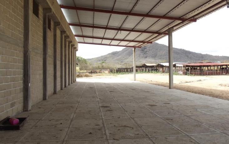 Foto de terreno industrial en venta en carretera internacional tramo cintalapa - tapanatepec kilometro 2+00 , san ricardo, cintalapa, chiapas, 1728358 No. 07