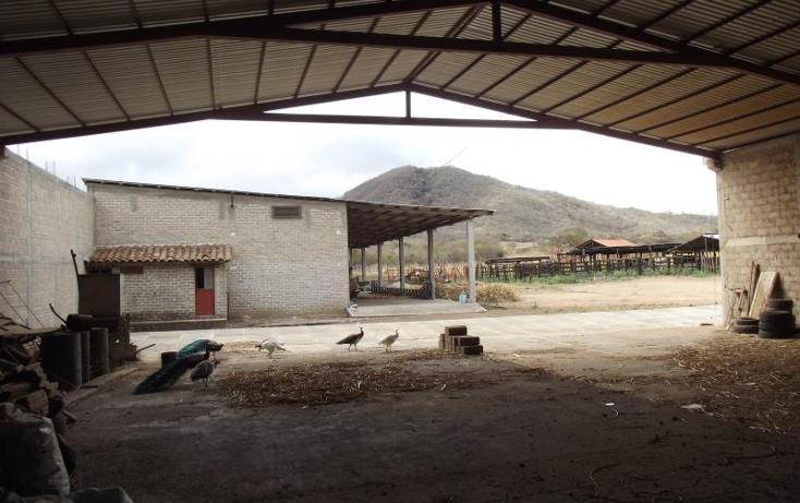 Foto de terreno industrial en venta en carretera internacional tramo cintalapa - tapanatepec kilometro 2+00 , san ricardo, cintalapa, chiapas, 1728358 No. 19