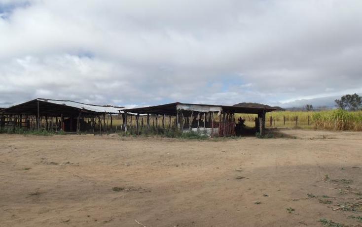Foto de terreno industrial en venta en carretera internacional tramo cintalapa - tapanatepec kilometro 2+00 , san ricardo, cintalapa, chiapas, 1728358 No. 22
