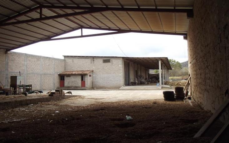 Foto de terreno industrial en venta en carretera internacional tramo cintalapa - tapanatepec kilometro 2+00 , san ricardo, cintalapa, chiapas, 1728358 No. 24