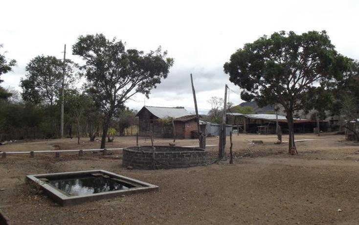 Foto de terreno industrial en venta en carretera internacional tramo cintalapa - tapanatepec kilometro 2+00 , san ricardo, cintalapa, chiapas, 1728358 No. 30