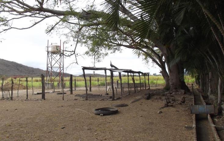 Foto de terreno industrial en venta en carretera internacional tramo cintalapa - tapanatepec kilometro 2+00 , san ricardo, cintalapa, chiapas, 1728358 No. 31