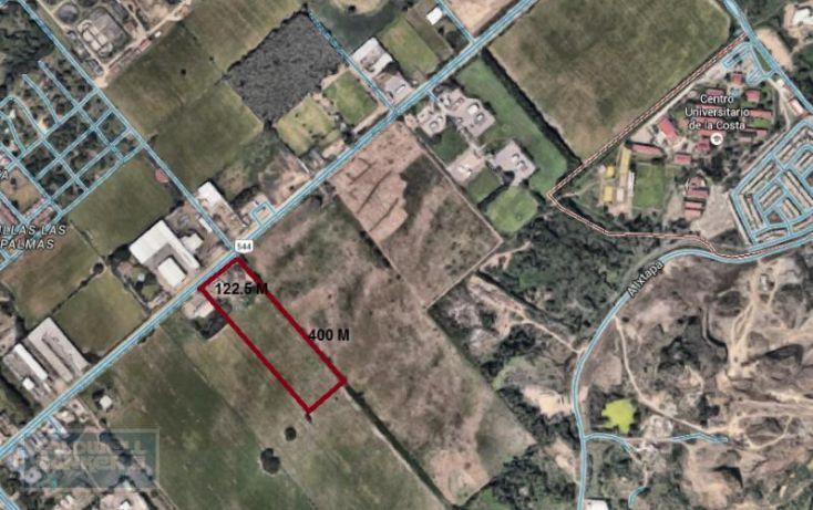 Foto de terreno habitacional en venta en carretera ixtapa las palmas, ixtapa, puerto vallarta, jalisco, 2011294 no 08