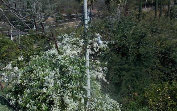 Foto de rancho en venta en carretera km 18 12 cuatlachinameca san rafael de zaragoza, san rafael zaragoza, tlaltizapán de zapata, morelos, 222343 no 05