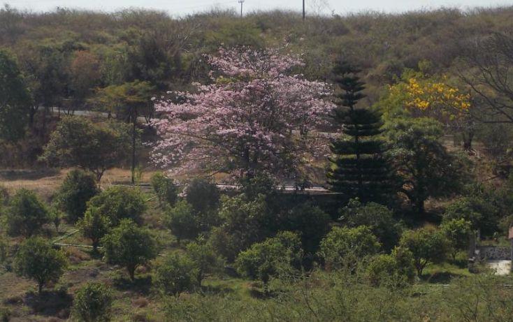Foto de rancho en venta en carretera km 18 12 cuatlachinameca san rafael de zaragoza, san rafael zaragoza, tlaltizapán de zapata, morelos, 222343 no 10