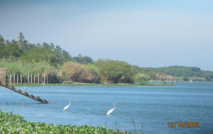 Foto de terreno habitacional en venta en carretera la barrapie de la cuesta 0, aguas blancas, coyuca de benítez, guerrero, 1700248 no 02