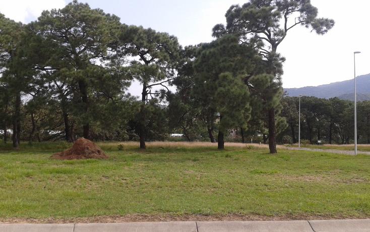 Foto de terreno habitacional en venta en carretera libre a tequila. coto: tres ríos residencial. , la venta del astillero, zapopan, jalisco, 2045637 No. 04