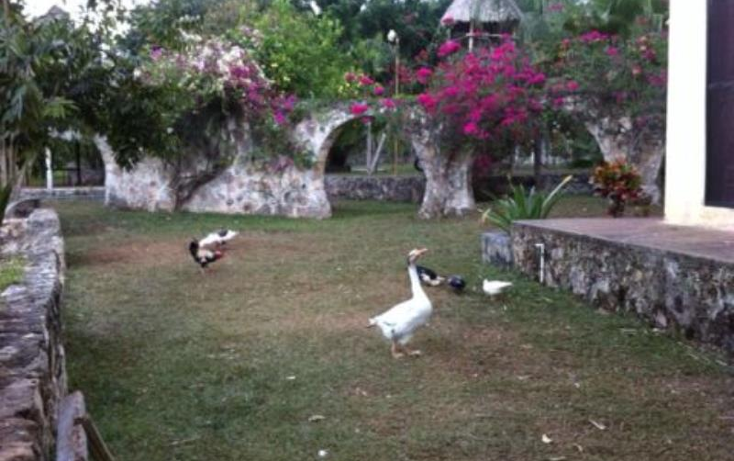 Foto de terreno comercial en venta en carretera libre cancun merida 1, leona vicario, benito ju?rez, quintana roo, 491297 No. 02