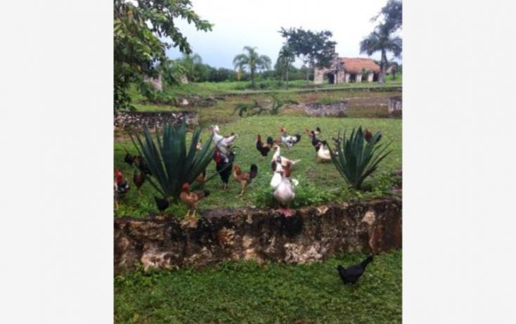 Foto de terreno comercial en venta en carretera libre cancun merida 1, leona vicario, benito juárez, quintana roo, 491297 no 03