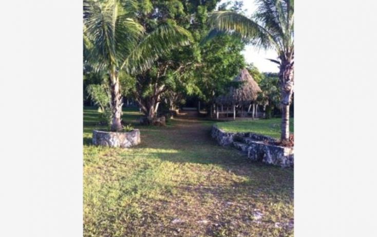 Foto de terreno comercial en venta en carretera libre cancun merida 1, leona vicario, benito juárez, quintana roo, 491297 no 04