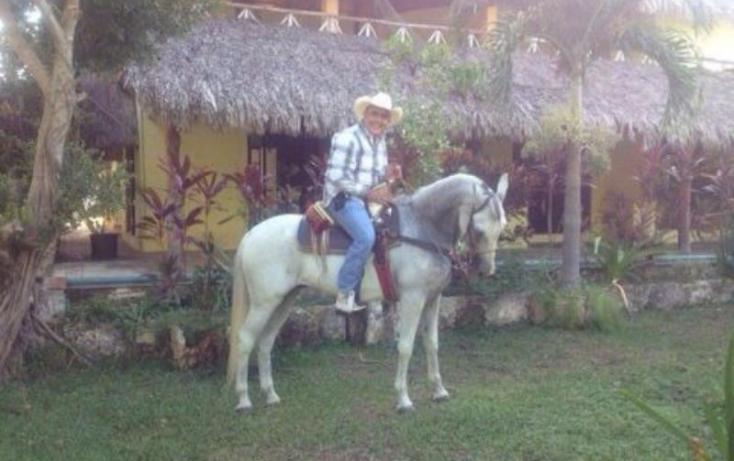 Foto de terreno comercial en venta en carretera libre cancun merida 1, leona vicario, benito juárez, quintana roo, 491297 no 06