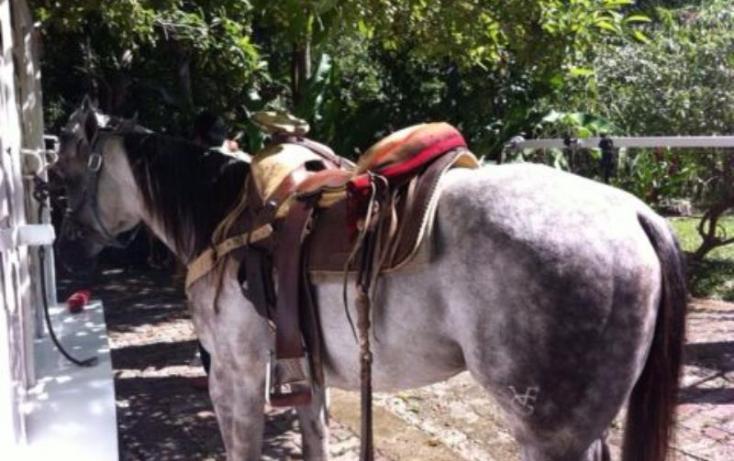Foto de terreno comercial en venta en carretera libre cancun merida 1, leona vicario, benito juárez, quintana roo, 491297 no 18