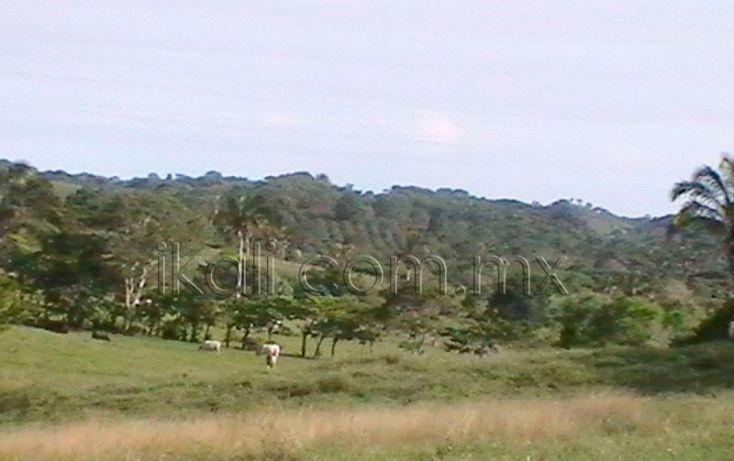 Foto de terreno habitacional en venta en carretera los kilometros, desviándose hacia el mar en rancho nuevo, higo de la esperanza, tuxpan, veracruz, 1669154 no 07