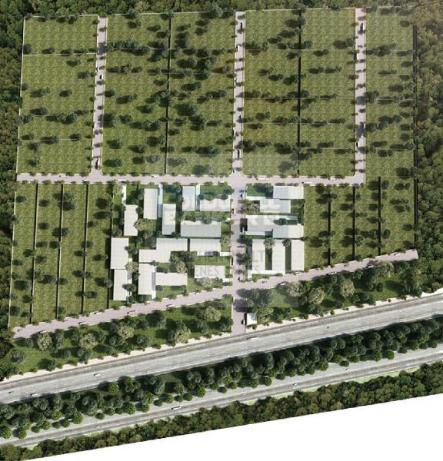 Foto de terreno habitacional en venta en  , flamboyanes, progreso, yucatán, 1754716 No. 02