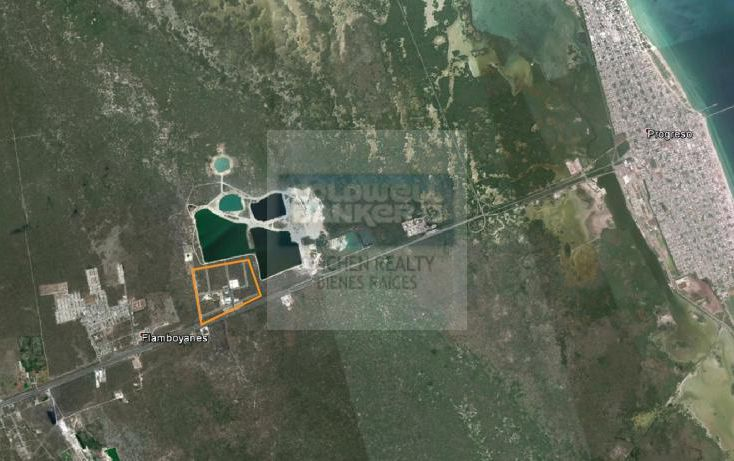 Foto de terreno habitacional en venta en carretera meridaprogreso, flamboyanes, progreso, yucatán, 1754716 no 03