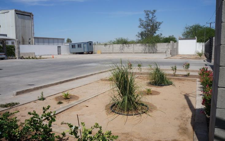 Foto de oficina en renta en carretera mexicali- san luis kilometro 14+644 , 1 de diciembre, mexicali, baja california, 3423486 No. 11