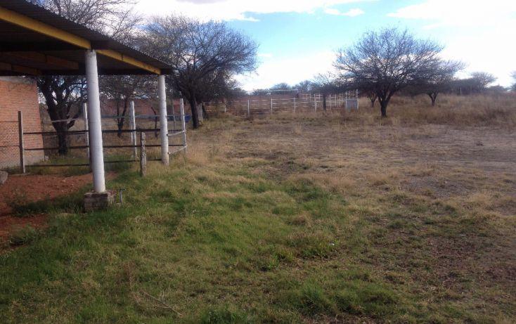 Foto de rancho en venta en carretera méxico ags 45 sur panamericana sn, san antonio de peñuelas, aguascalientes, aguascalientes, 1768643 no 04