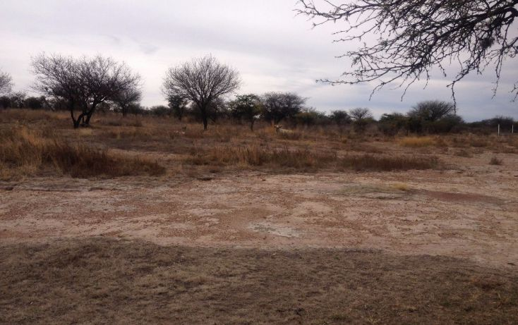 Foto de rancho en venta en carretera méxico ags 45 sur panamericana sn, san antonio de peñuelas, aguascalientes, aguascalientes, 1768643 no 05