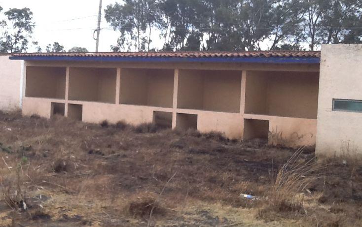 Foto de terreno habitacional en venta en carretera méxico cuautla km 7, san gregorio cuautzingo, chalco, estado de méxico, 1950312 no 09