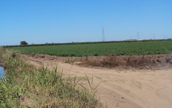 Foto de terreno habitacional en venta en carretera mochis ahome atras de casa corona construrama, primer cuadro, ahome, sinaloa, 1717192 no 04