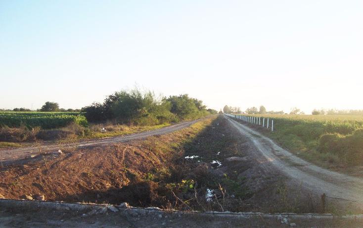 Foto de terreno habitacional en venta en  , bajada de san miguel, ahome, sinaloa, 1768483 No. 19