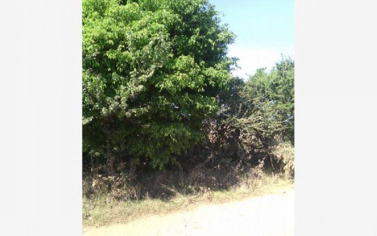 Foto de terreno habitacional en venta en carretera morelia 28, santa cruz de las flores, tlajomulco de zúñiga, jalisco, 1751336 no 09