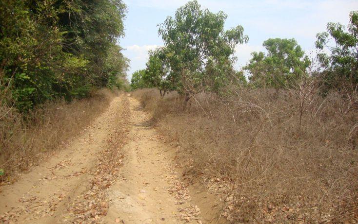 Foto de terreno habitacional en venta en carretera nacional acapulco barra vieja, el podrido, acapulco de juárez, guerrero, 1701034 no 03