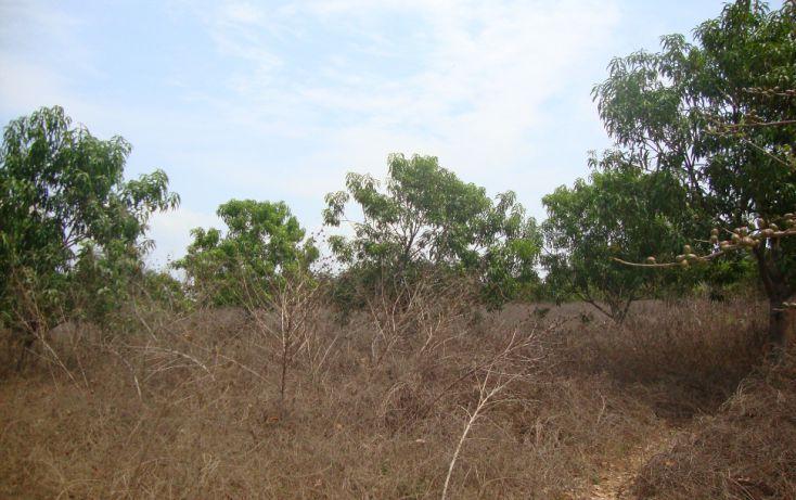 Foto de terreno habitacional en venta en carretera nacional acapulco barra vieja, el podrido, acapulco de juárez, guerrero, 1701034 no 05