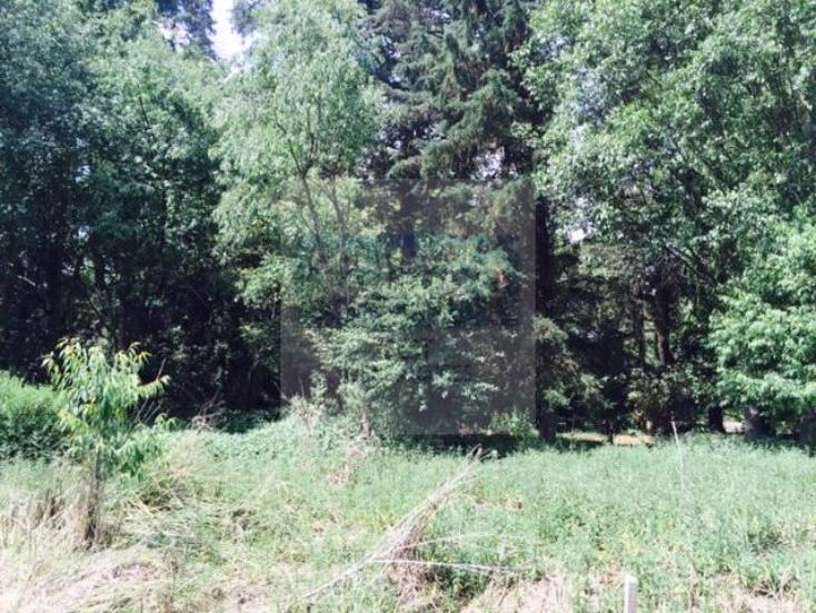 Foto de terreno habitacional en venta en  , santiago tianguistenco de galeana, tianguistenco, méxico, 929227 No. 02