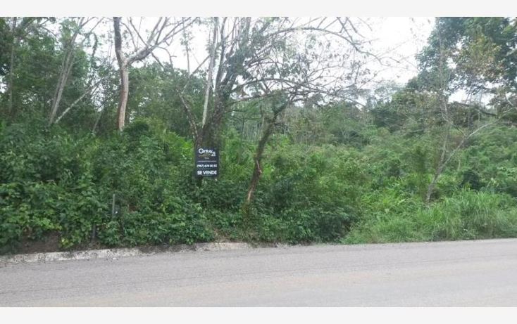 Foto de terreno comercial en venta en carretera palenque - ocosingo kilometro 68 0, palenque centro, palenque, chiapas, 443641 No. 01