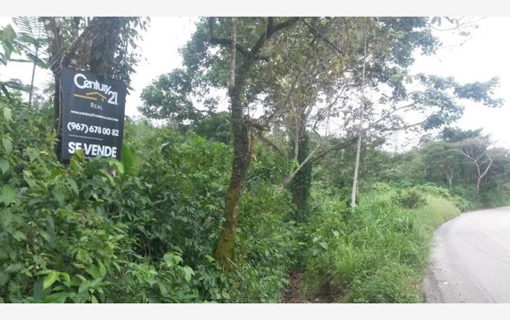 Foto de terreno comercial en venta en carretera palenque - ocosingo kilometro 68 0, palenque centro, palenque, chiapas, 443641 No. 03