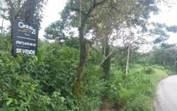 Foto de terreno habitacional en venta en carretera palenque ocosingo km 68 0 sn, palenque, palenque, chiapas, 1798931 no 03