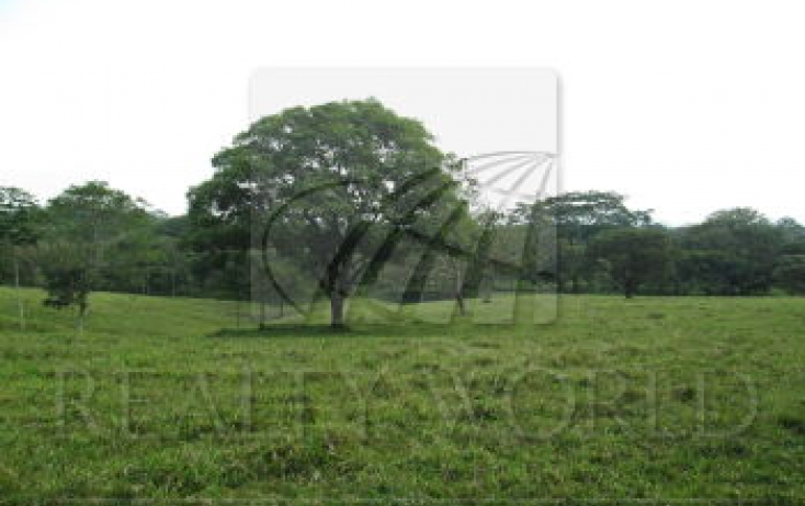 Foto de terreno habitacional en venta en carretera palenque ruinas , la esperanza, palenque, chiapas, 791965 no 03