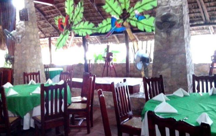 Foto de terreno comercial en venta en carretera palenque ruinas, chacamax, palenque, chiapas, 2040634 no 11