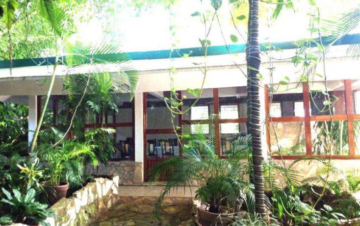 Foto de terreno comercial en venta en carretera palenque ruinas, chacamax, palenque, chiapas, 2040634 no 16