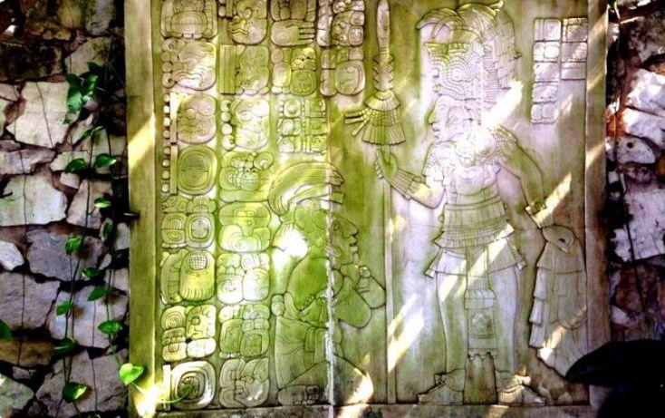 Foto de terreno comercial en venta en carretera palenque ruinas, chacamax, palenque, chiapas, 2040634 no 39