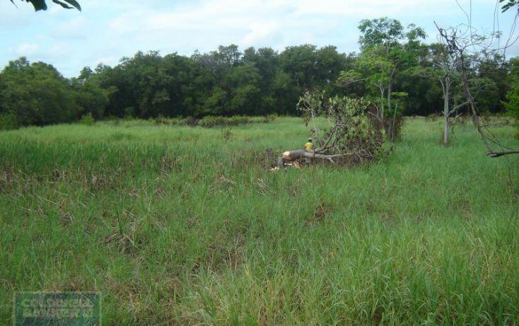 Foto de terreno comercial en venta en carretera paraisotupilco, el limón, paraíso, tabasco, 1986318 no 03