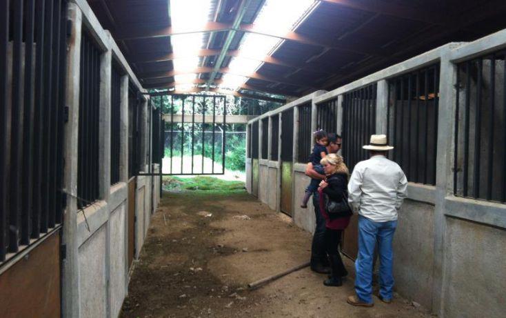 Foto de terreno comercial en renta en carretera picacho ajusco km 6 666, pedregal de san nicolás 1a sección, tlalpan, df, 1155685 no 06