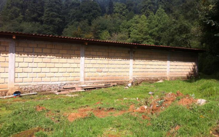 Foto de terreno comercial en renta en carretera picacho ajusco km 6 666, pedregal de san nicolás 1a sección, tlalpan, df, 1155685 no 07