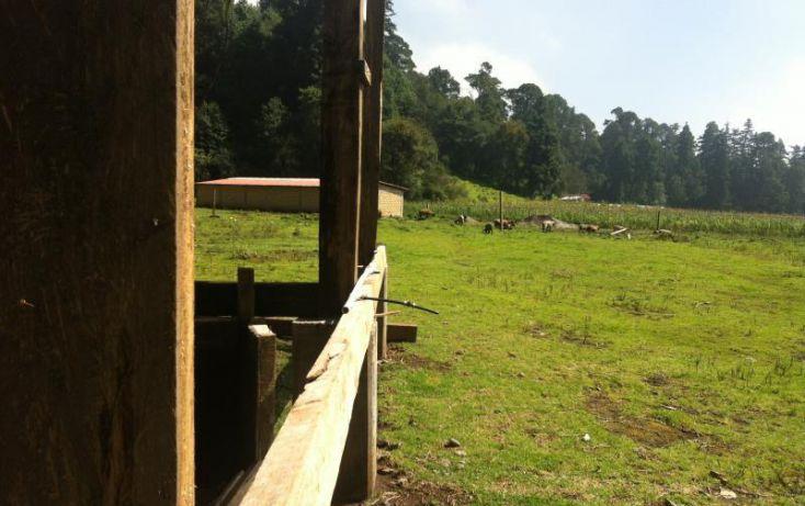 Foto de terreno comercial en renta en carretera picacho ajusco km 6 666, pedregal de san nicolás 1a sección, tlalpan, df, 1155685 no 09