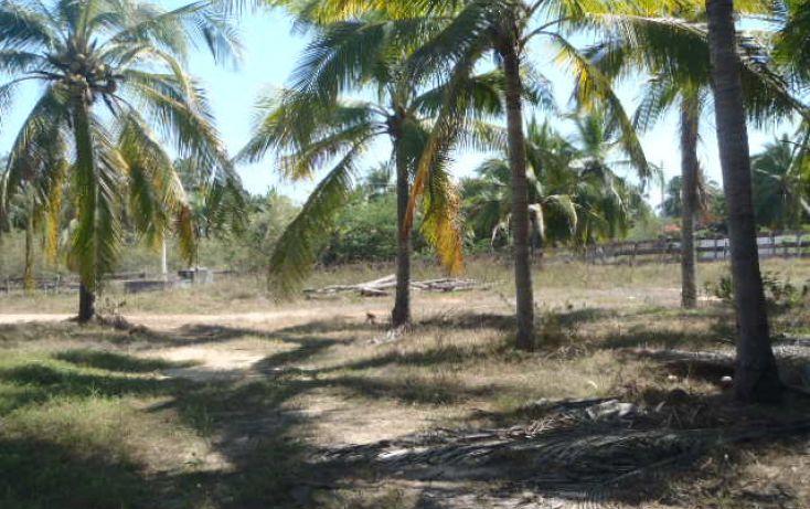 Foto de terreno habitacional en venta en carretera playa blanca, aeropuerto, zihuatanejo de azueta, guerrero, 1638793 no 10