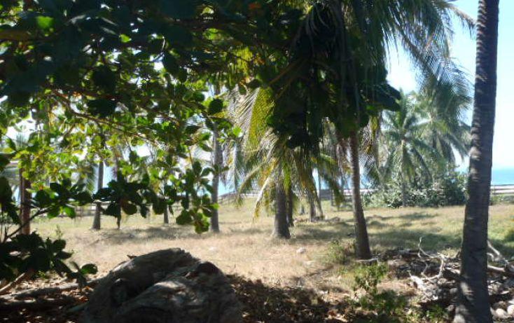 Foto de terreno habitacional en venta en carretera playa blanca, aeropuerto, zihuatanejo de azueta, guerrero, 1638793 no 11