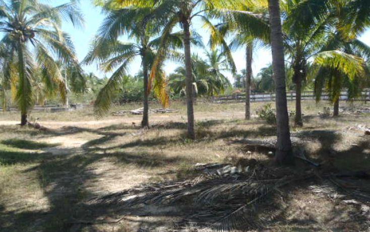 Foto de terreno habitacional en venta en carretera playa blanca, aeropuerto, zihuatanejo de azueta, guerrero, 1638793 no 15