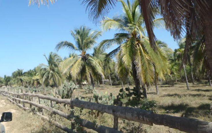Foto de terreno habitacional en venta en carretera playa blanca, aeropuerto, zihuatanejo de azueta, guerrero, 1638793 no 22