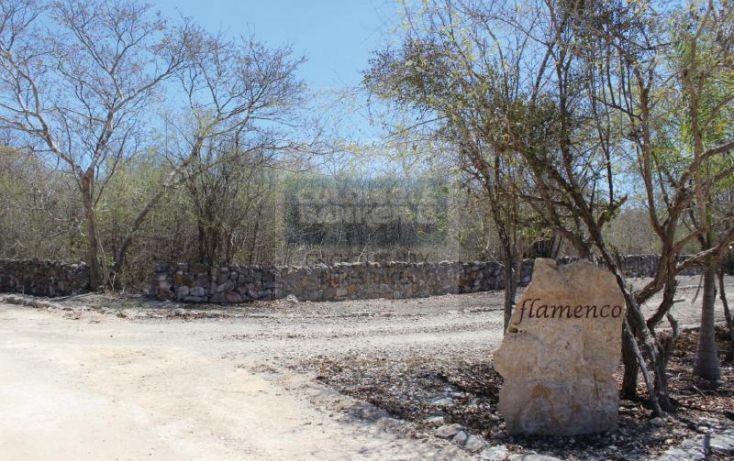 Foto de terreno habitacional en venta en carretera progreso, dzibilchaltún, mérida, yucatán, 1754772 no 02