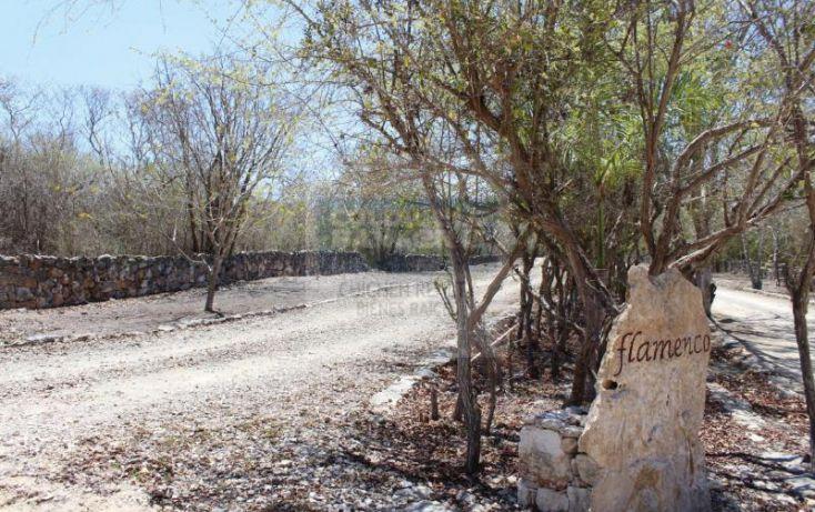 Foto de terreno habitacional en venta en carretera progreso, dzibilchaltún, mérida, yucatán, 1754772 no 03