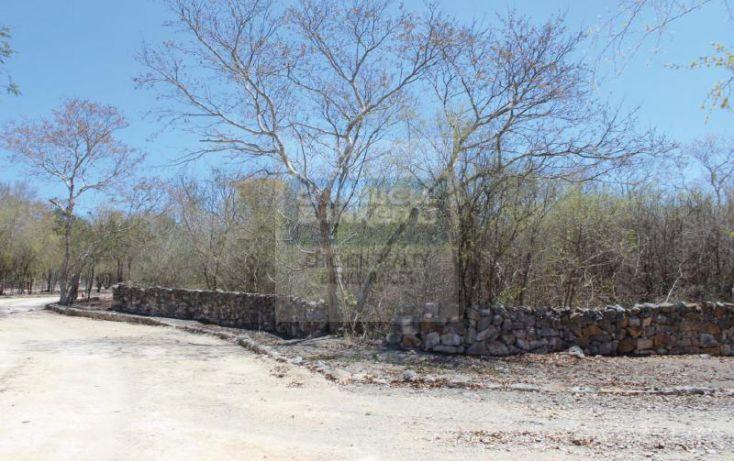 Foto de terreno habitacional en venta en carretera progreso, dzibilchaltún, mérida, yucatán, 1754772 no 04