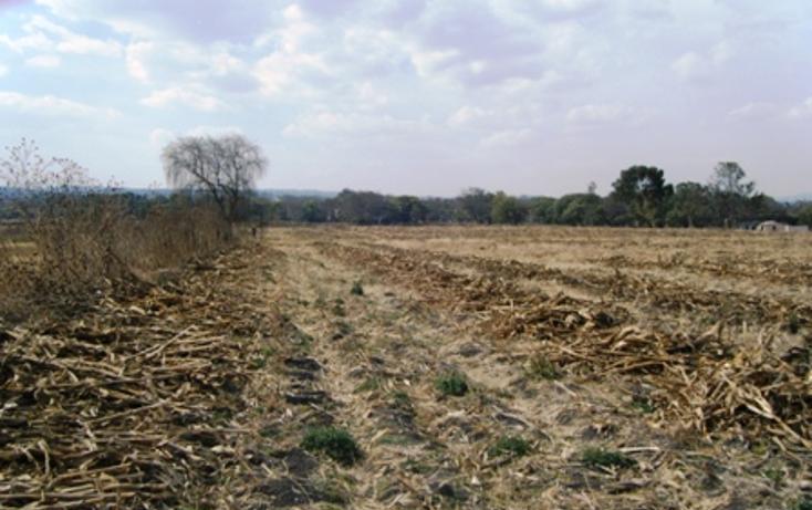 Foto de terreno habitacional en venta en carretera queretaro-mexico , soyaniquilpan san francisco, soyaniquilpan de juárez, méxico, 94913 No. 03