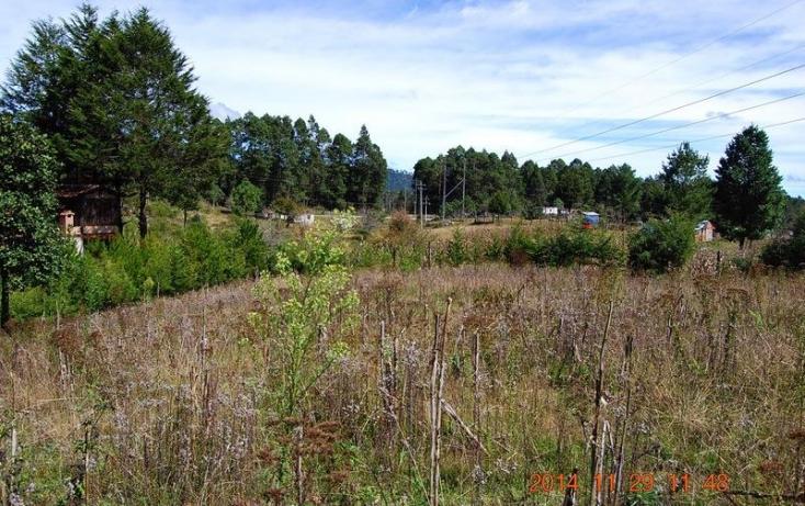 Foto de terreno habitacional en venta en carretera rancho nuevo  ocosingo, la esperanza, altamirano, chiapas, 817107 no 02